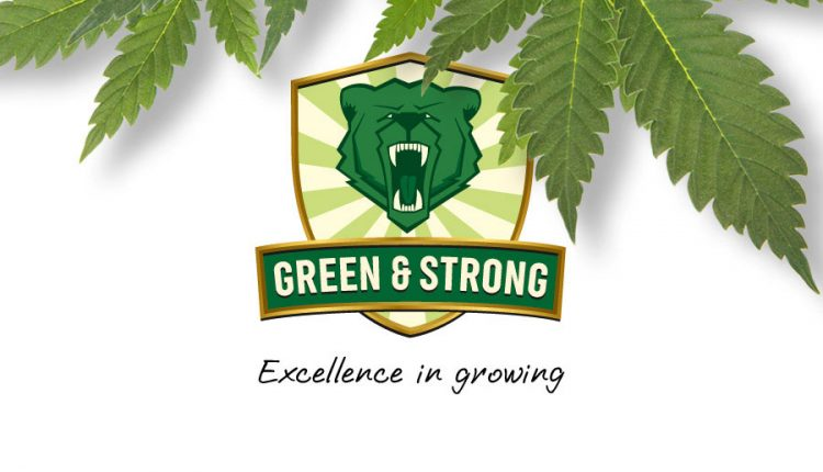 green-and-strong_01